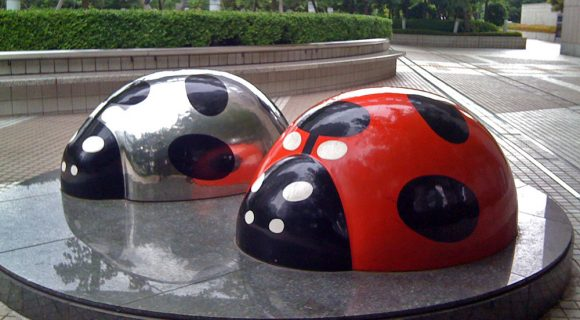 Ladybug Japan