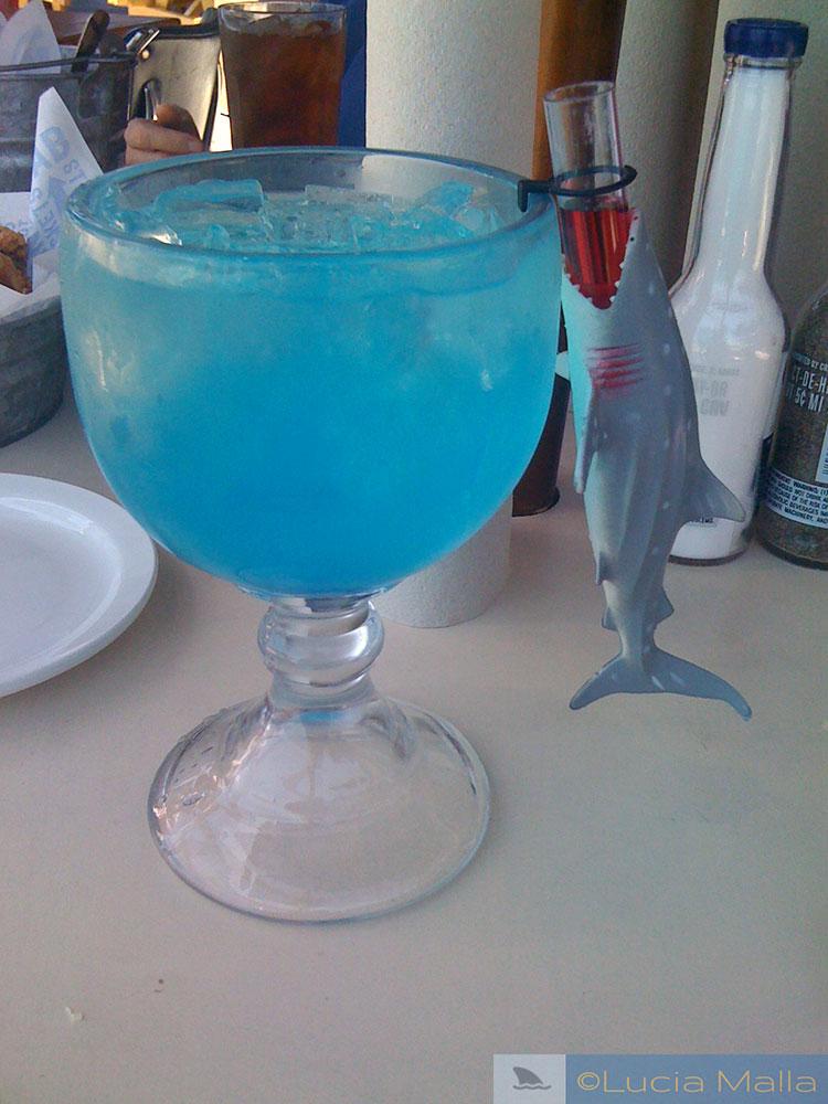 Shark Attack drink -