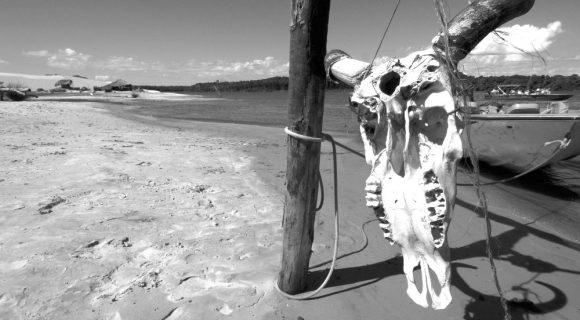 Dia Mundial da Fotografia 2010 – Brasil em preto e branco
