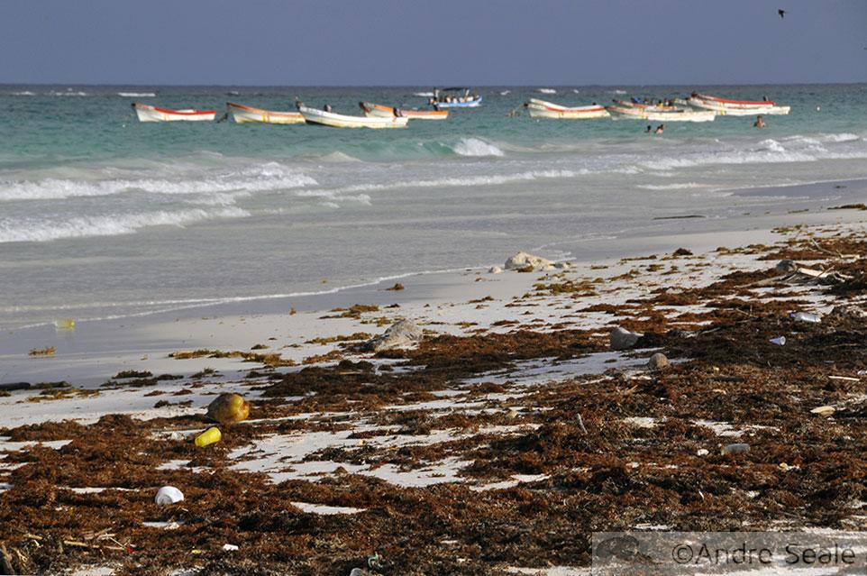 Praia de drift - Tulum - México