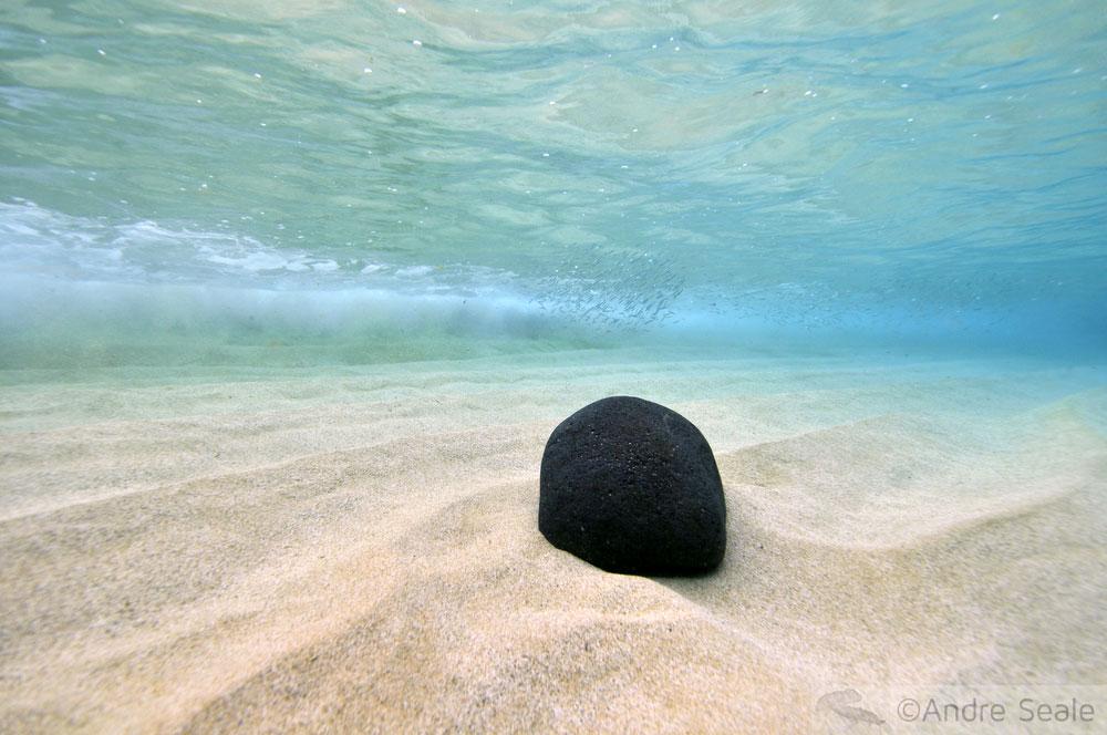 No meio do caminho tinha uma pedra