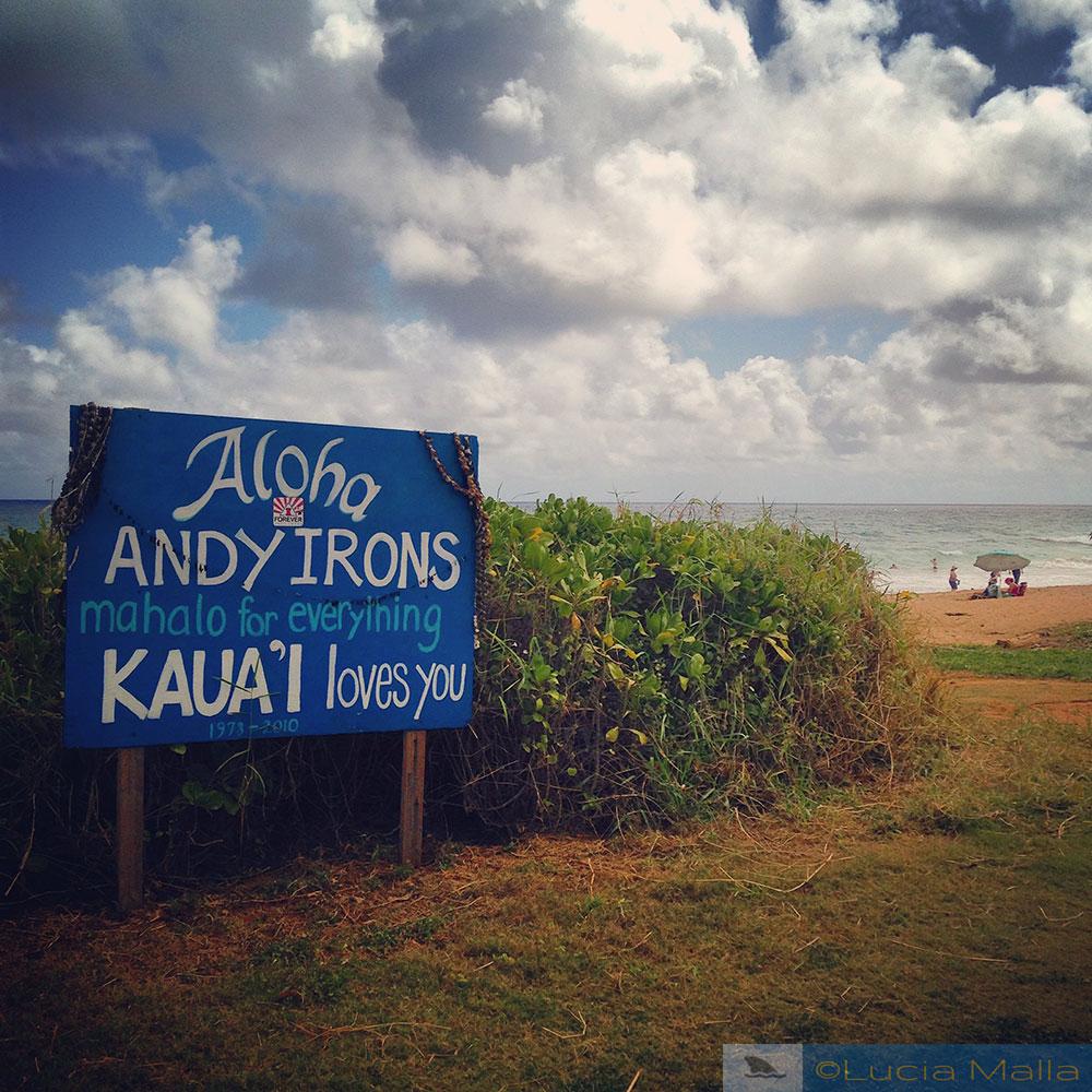 RIP Andy irons - Kauai
