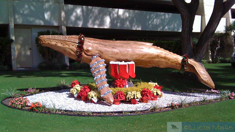 Baleia de Natal
