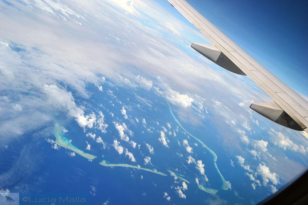 Imensidão azul - vista da janelinha do avião
