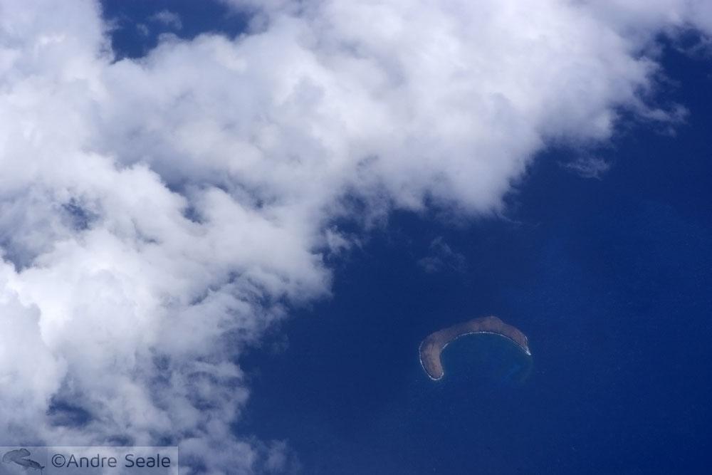 4 dias em Maui - Molokini