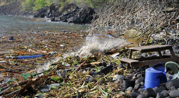 De como vivi um dia de tsunami