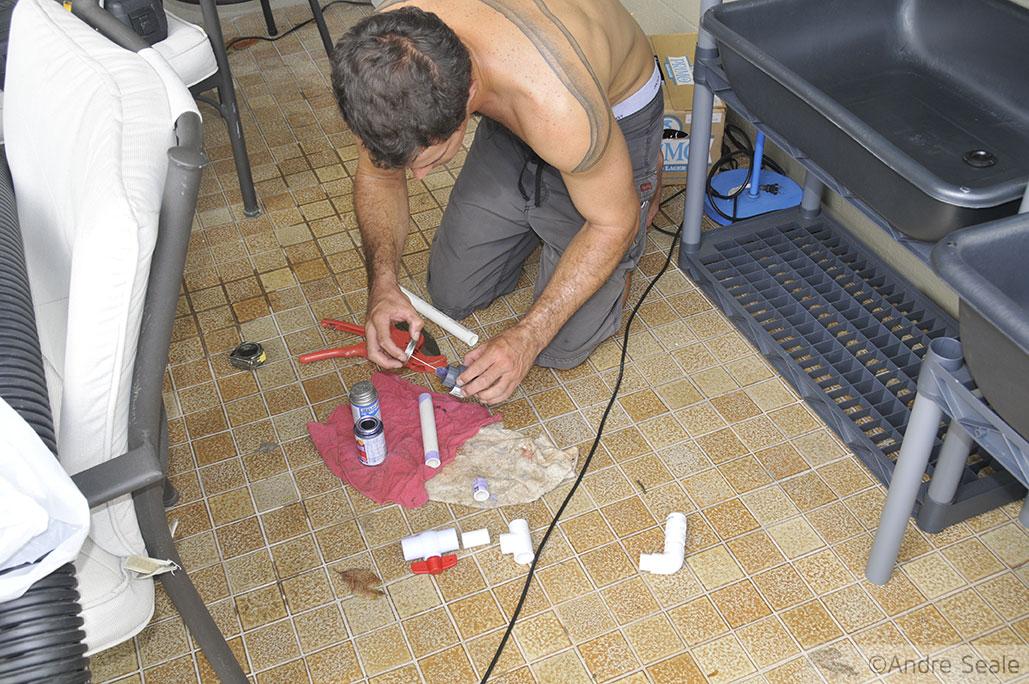 Montando o sistema de aquaponia