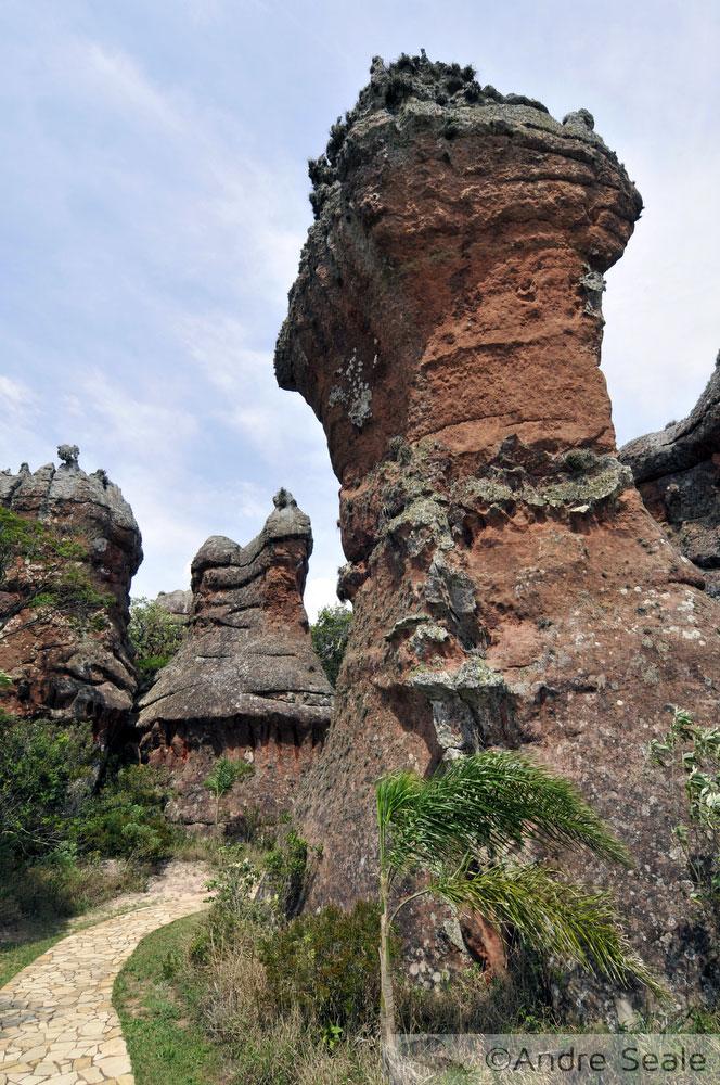 Trilha - Parque Estadual de Vila Velha