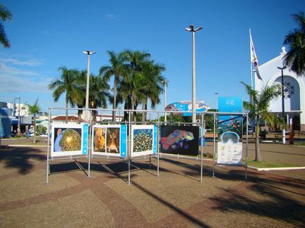 """Exposição """"Jardins Marinhos Tropicais"""" em Fernandópolis - SP"""
