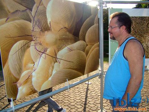 """Exposição """"Jardins Marinhos Tropicais"""" em Itápolis - SP"""
