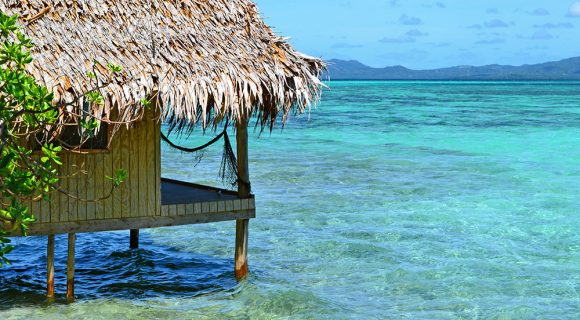 Black Coral Island: uma ilha para chamar de sua