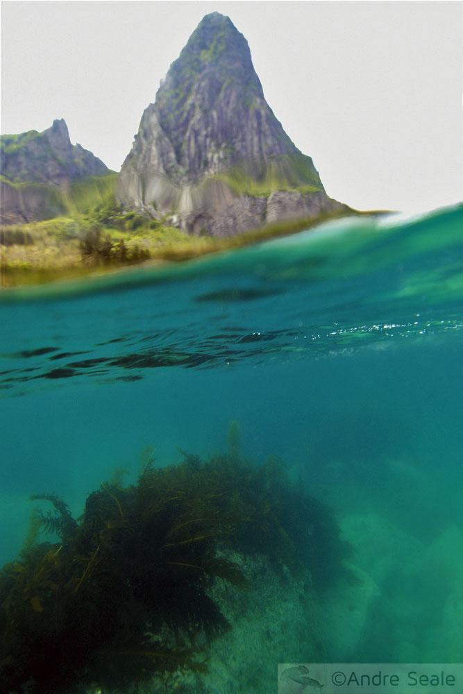 Snorkel em Ulleungdo