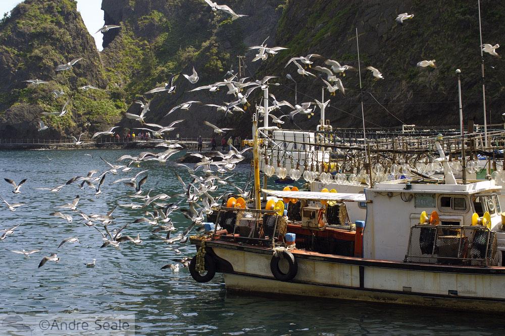 Ulleung-do - barco de pesca de lulas