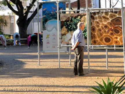 """Exposição """"Jardins Marinhos Tropicais"""" em Votuporanga"""