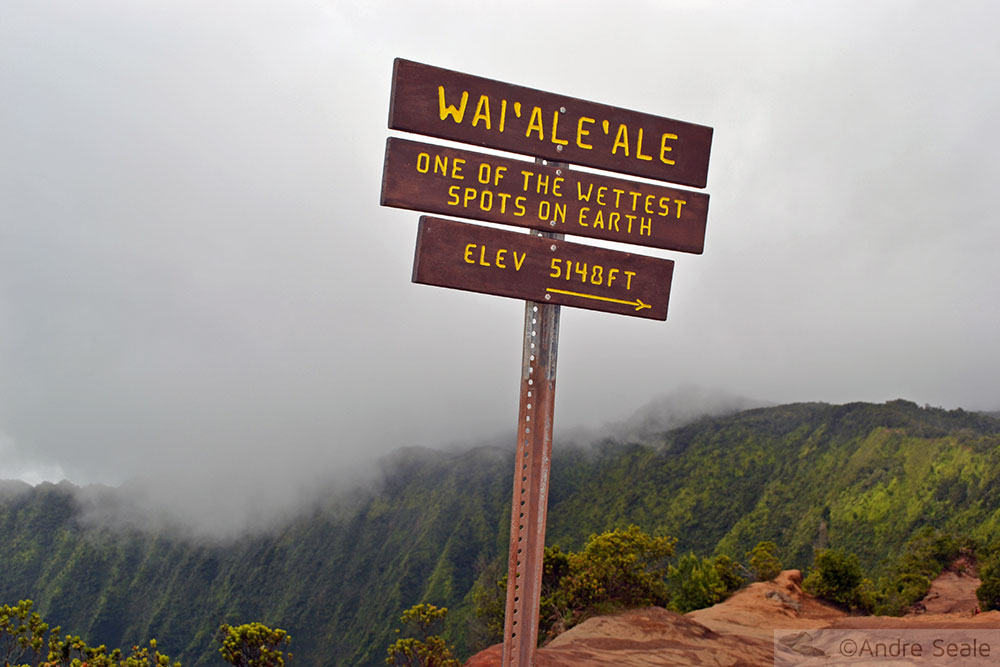 Waialeale - Kauai