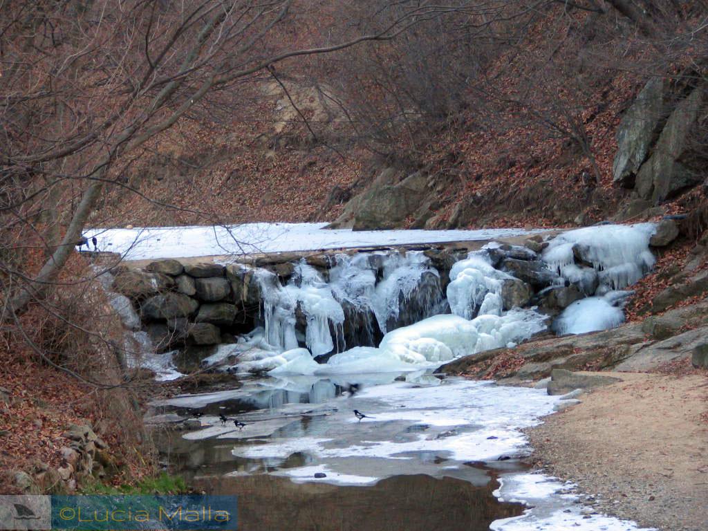 Cachoeira congelada - inverno na Coréia do Sul