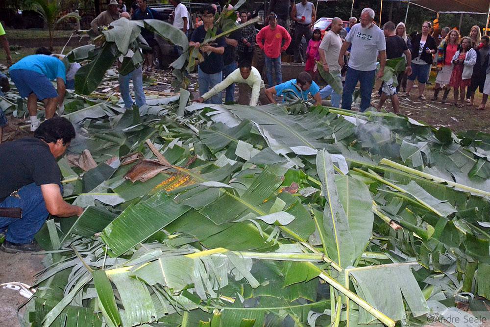 Cobertura de folhas de bananeira - como fazer um imu - luau no Havaí