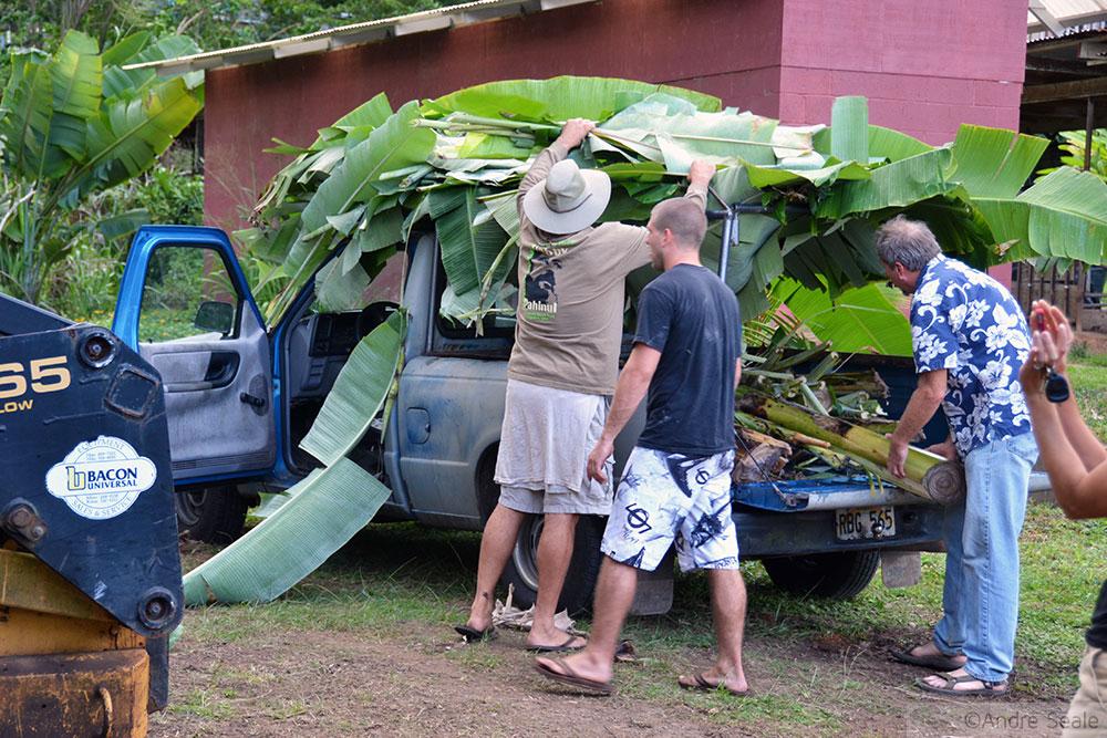 Carro com folhas de bananeira - Havaí