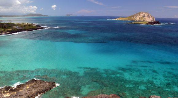 Dicas do Havaí by Malla