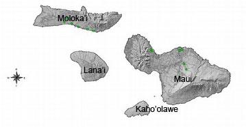 Mapa do município de Maui - Havaí