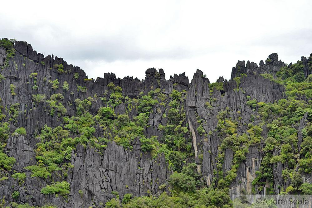 Linderalique - Poindimié - Nova Caledônia