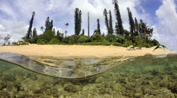 Sexta Sub: Îlot de Tibarama, Nova Caledônia