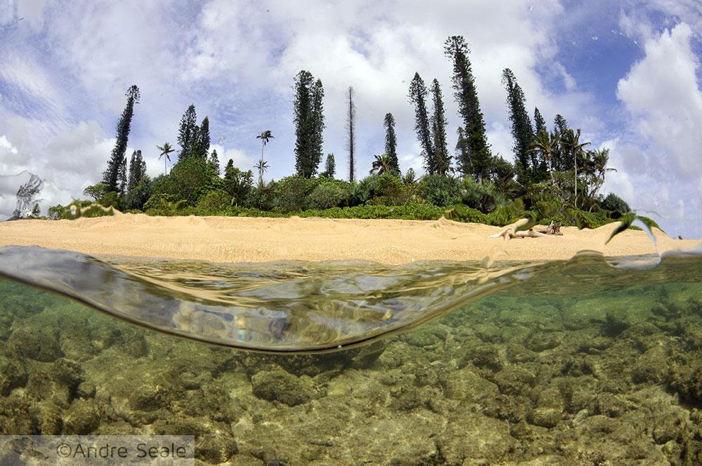snorkel na Îlot Tibarama - Poindimié - Nova Caledônia