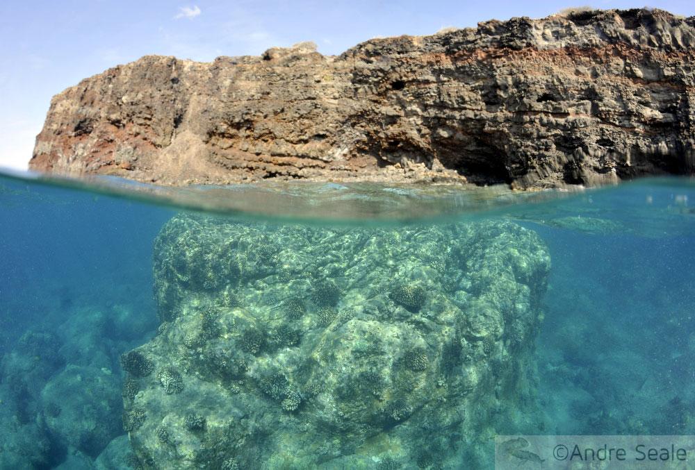 Snorkel no Havaí - Lanai