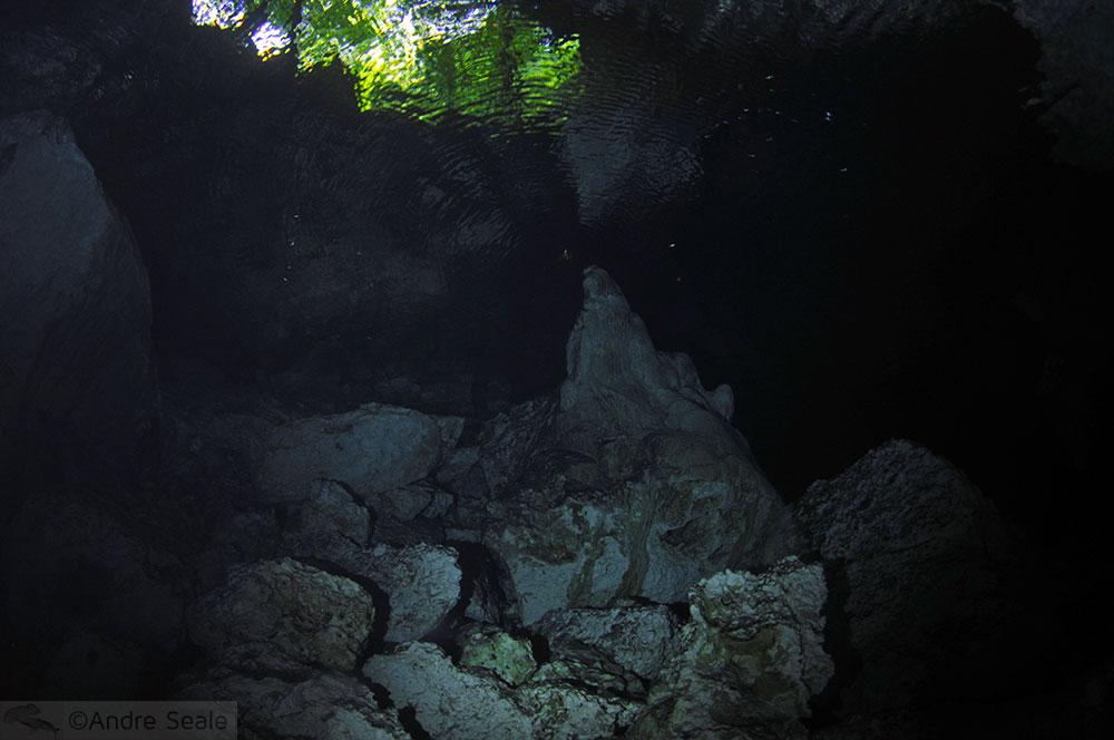 O que são cenotes? - Mergulho no Cenote Dos Ojos