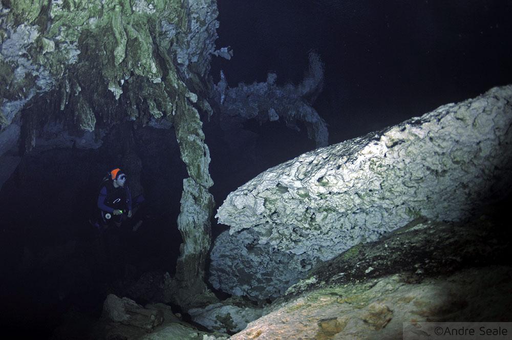 Mergulho no cenote Dos Ojos - Yucatan - México