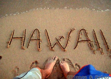 Feedback de viagem ao Hawaii: Bianca & Celso