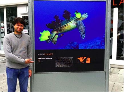 Turtle Grooming por André Seale - Exposição Wild Planet - Londres