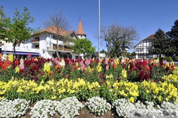 Jardim florido de primavera em Nova Petrópolis - RS