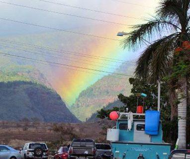 Feedback de viagem: o Havaí da Lucia e sua família