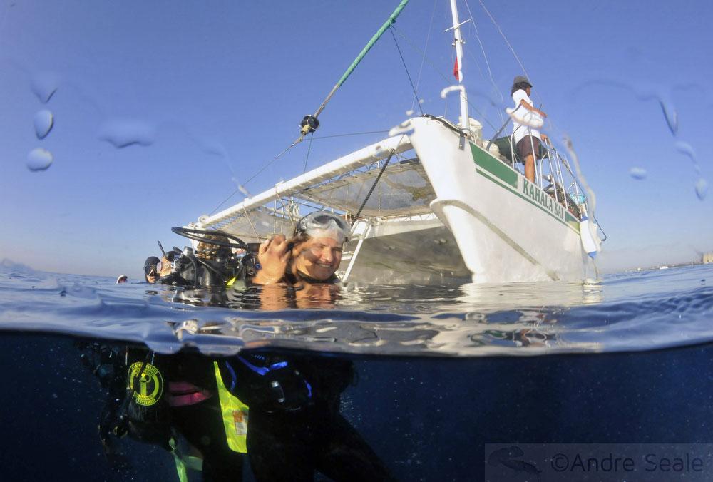Mergulhadora na superfície