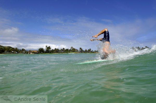 Dia Internacional do Surfe