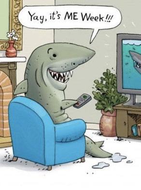 Me Week - cartoons da shark week