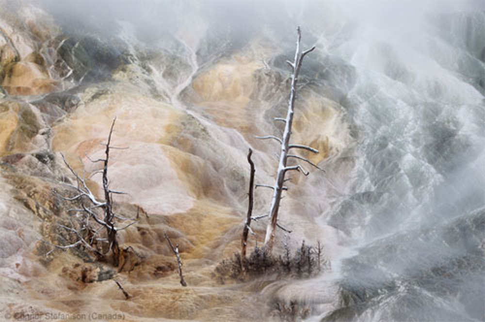 WPY2013 - Connor Stefanison - Hot Spring Magic