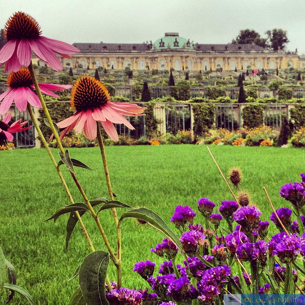 Castelo de Sanssouci - Potsdam