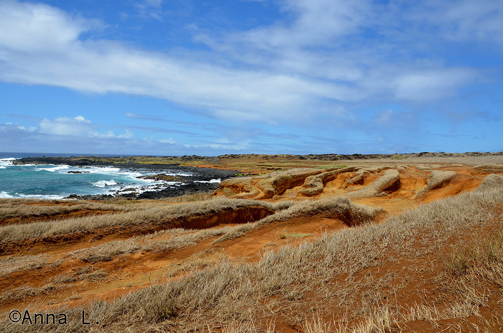 Estrada para Green Sand Beach - Big Island - Havaí