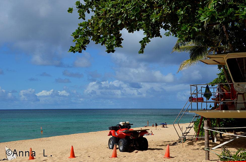 15 dias no Havaí da Anna - Pipeline