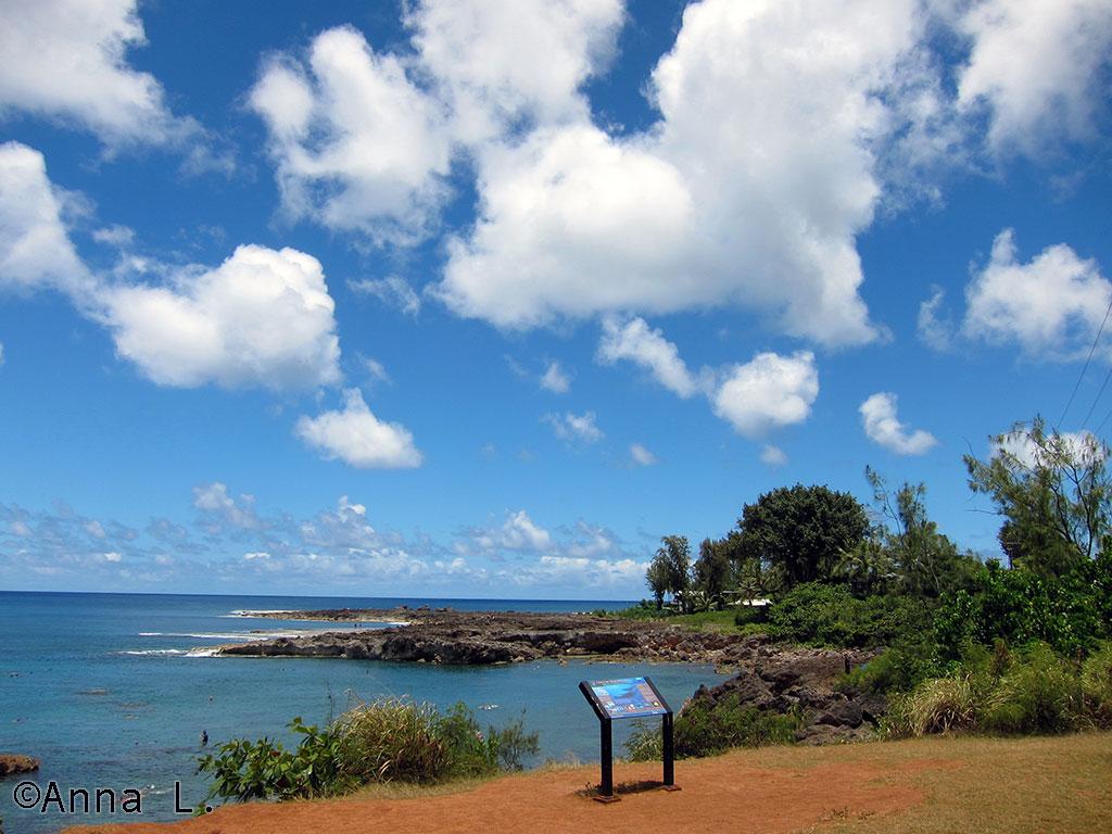 Shark's Cove - North Shore de Oahu - roteiro de 15 dias no Havaí