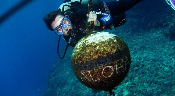 Feedback de viagem: 15 dias no Havaí da Anna