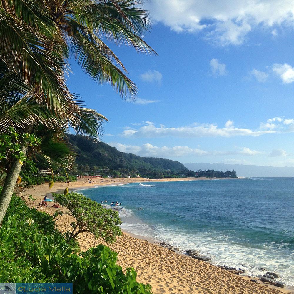 Sunset Beach - North Shore de Oahu - Havaí