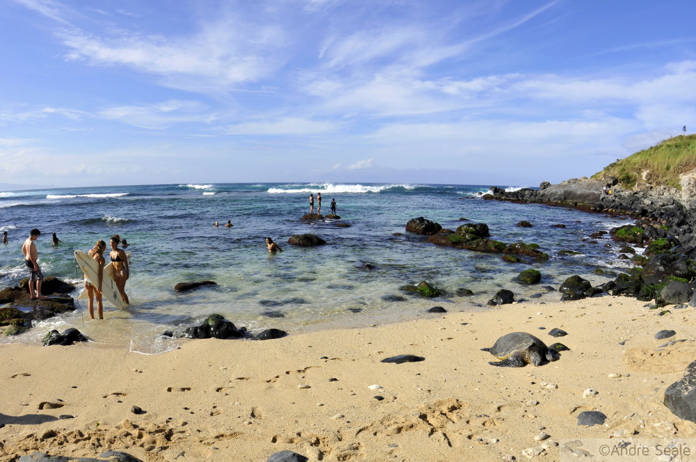 Minhas top 10 praias do Havaí versão 2014 - Hookipa Beach - Maui