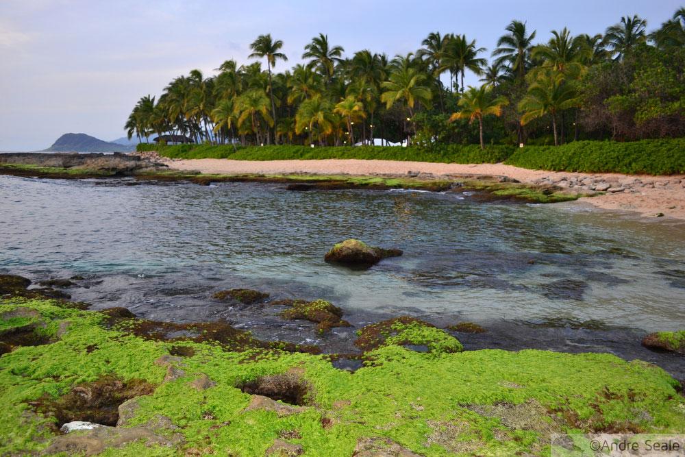 Secret Beach - Oahu