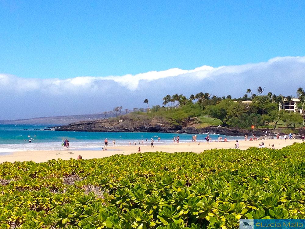 Hapuna Beach - Big Island - melhores praias do Havaí