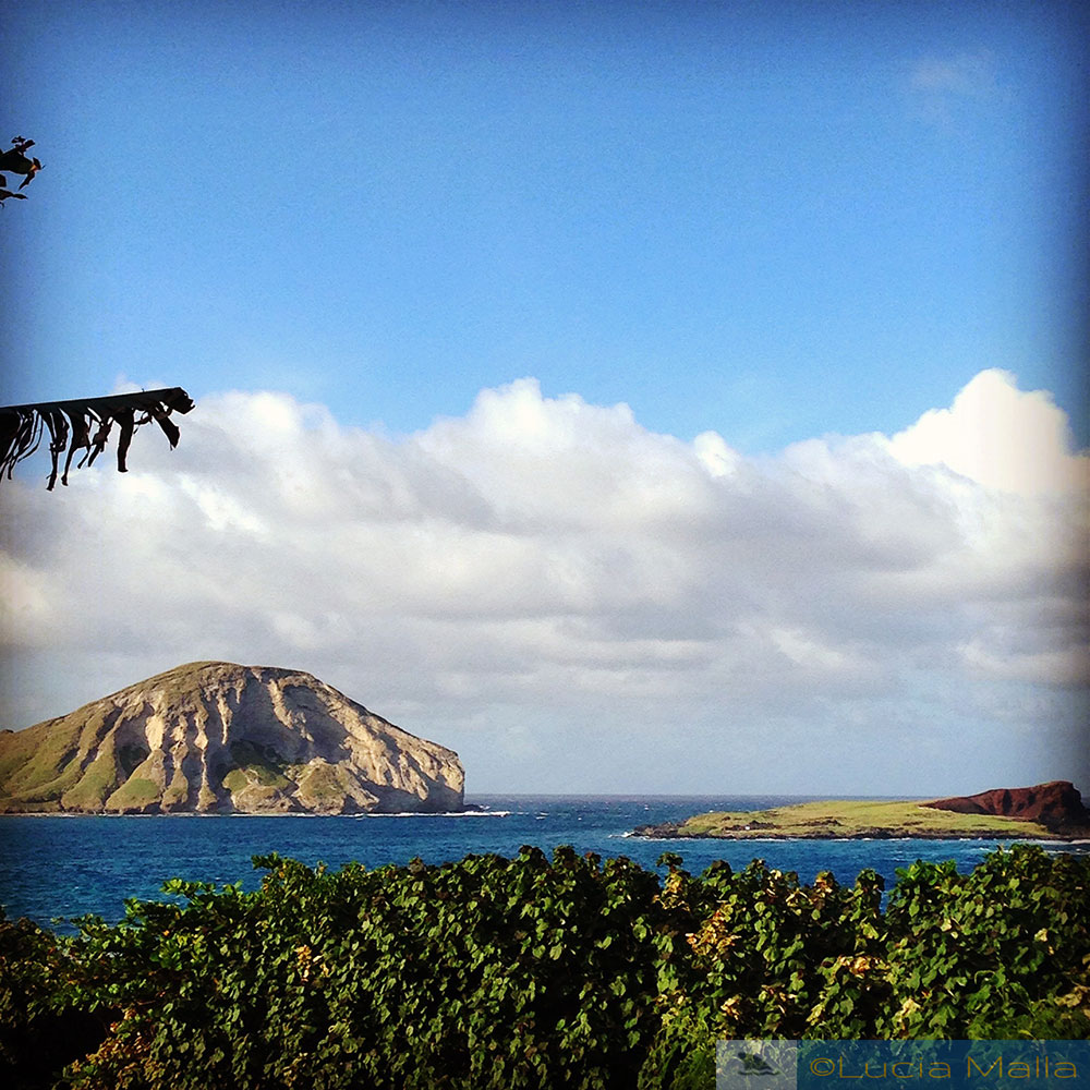 Guia de luau no Havaí - Makapuu