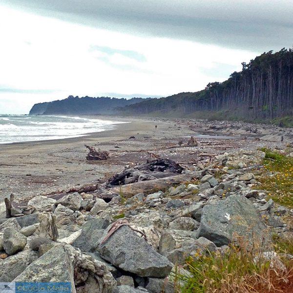 Nova Zelândia em 12 dias - praia da Haast