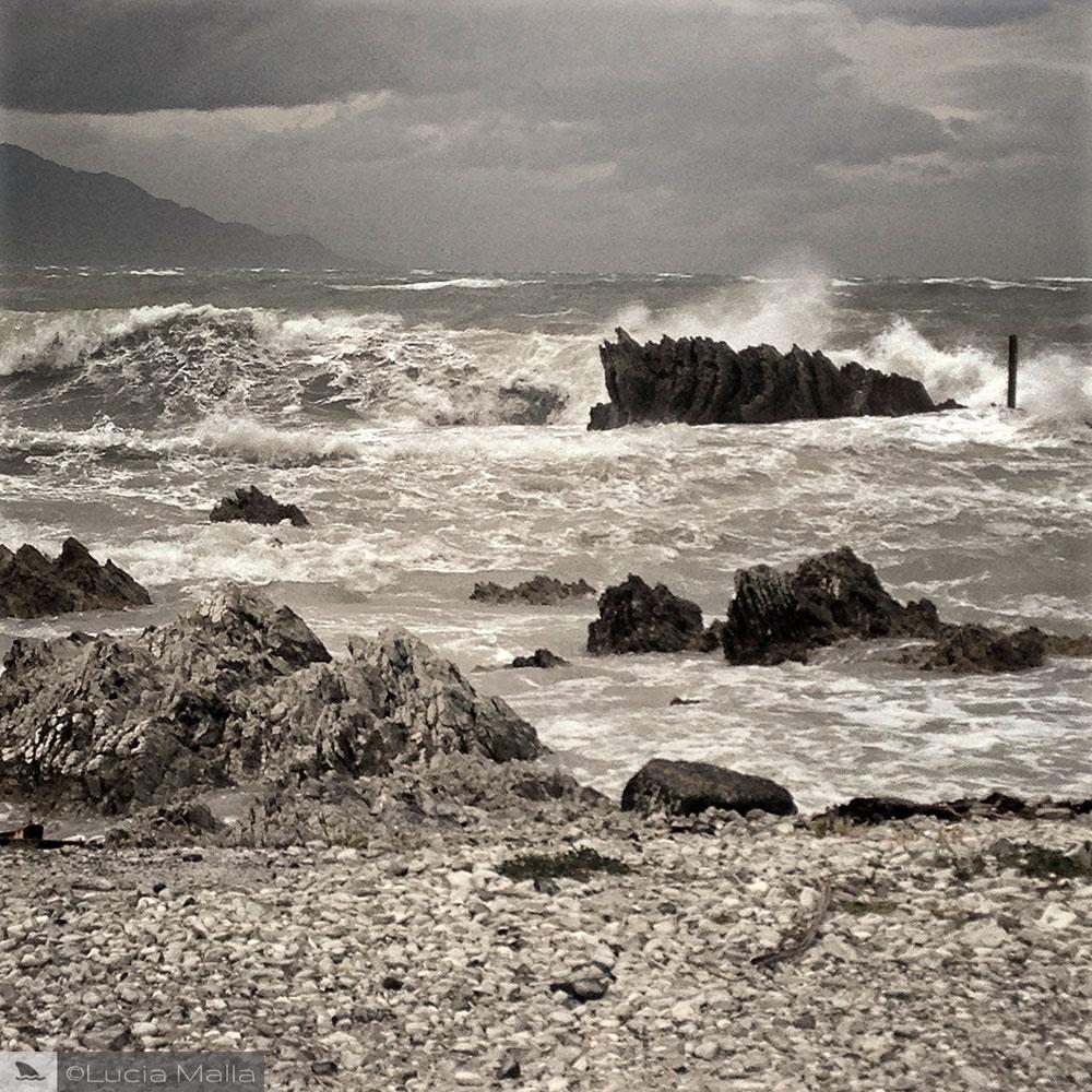 Nova Zelândia em 12 dias - mar de Kaikoura